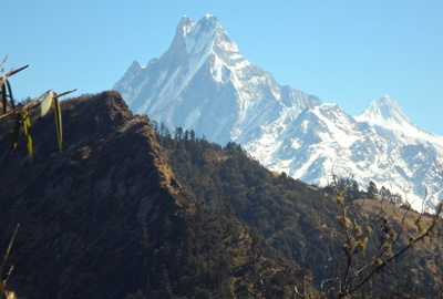 How to choose a trekking that is right to you in the Himalaya?