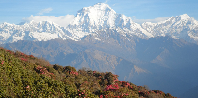 A complete guide to Annapurna Base camp Trek